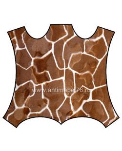 kover_Girafe